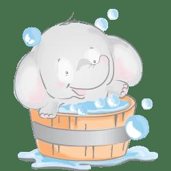 فیلی در وان