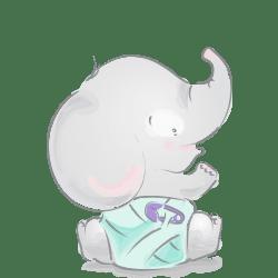 فیلی پوشک به پا